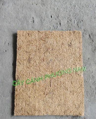 Xơ Dừa thảm (kích thước 50x50 cm)